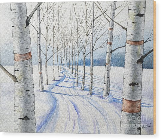 Birch Trees Along The Curvy Road Wood Print
