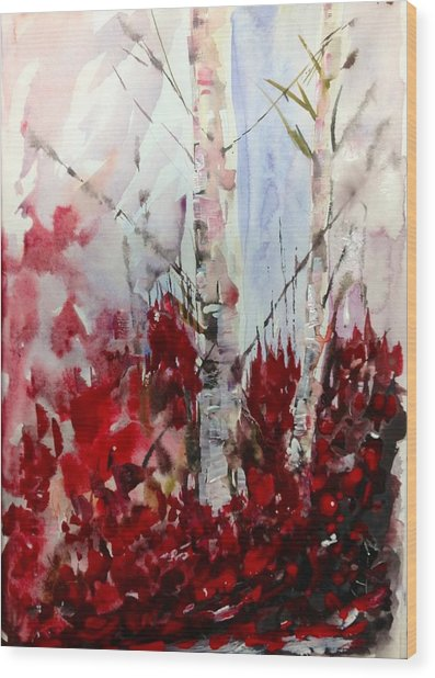 Birch Trees - Red Fall Foliage Wood Print