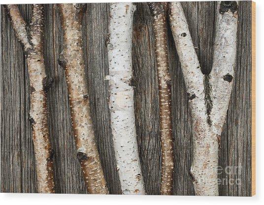 Birch Trunks Wood Print