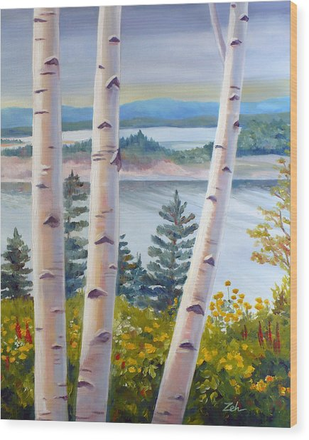 Birches In Nova Scotia Wood Print