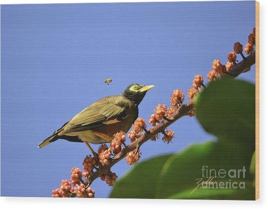 Bird And Bee Wood Print