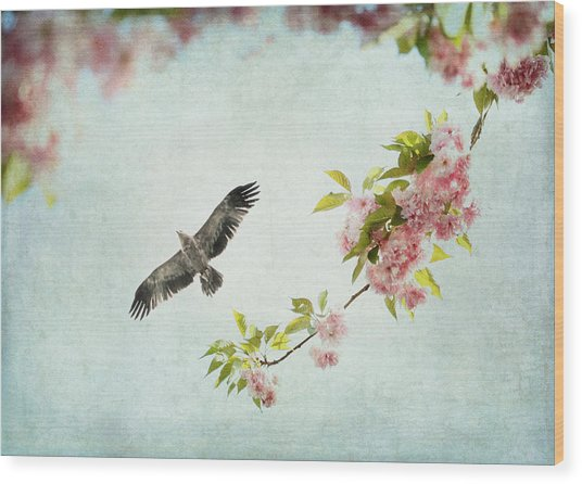 Bird And Pink And Green Flowering Branch On Blue Wood Print