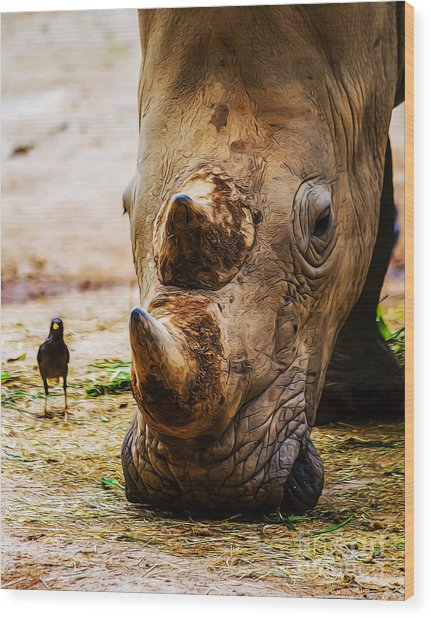 Bird And Rhino Wood Print