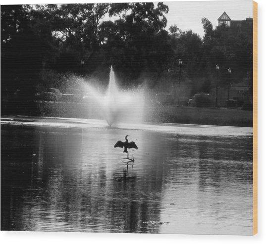 Bird Imitates Fountain Wood Print