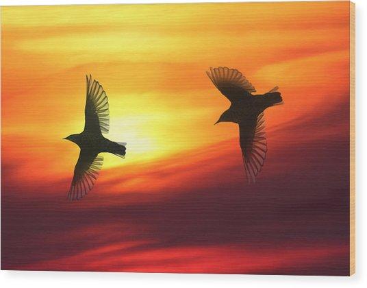 Bird Lovers Wood Print