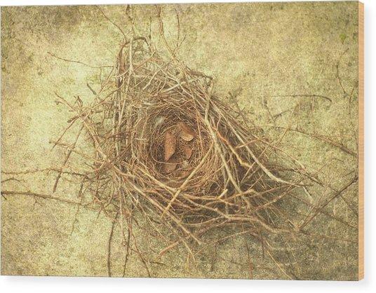 Bird Nest II Wood Print