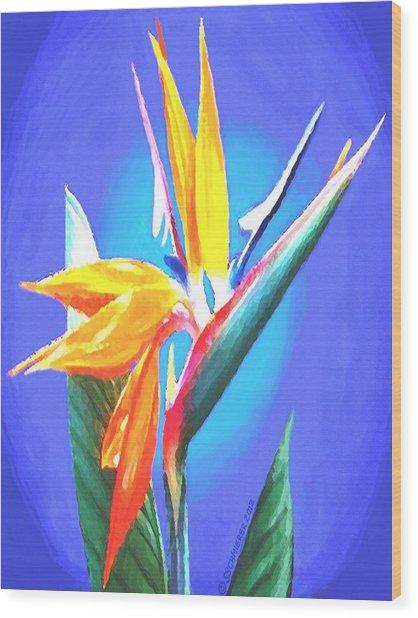 Bird Of Paradise Flower Wood Print