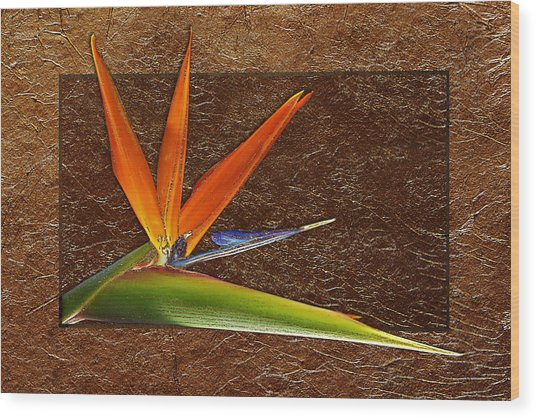 Bird Of Paradise Gold Leaf Wood Print