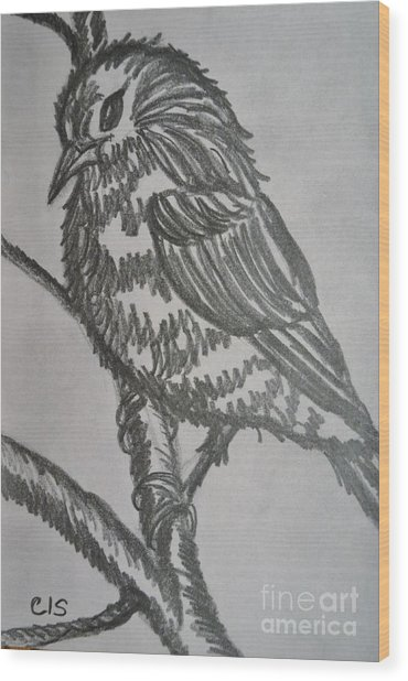 Bird On Branch Wood Print by Cecilia Stevens