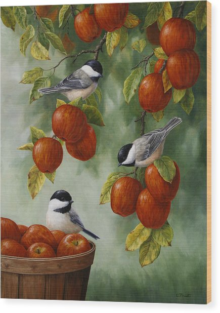 Bird Painting - Apple Harvest Chickadees Wood Print