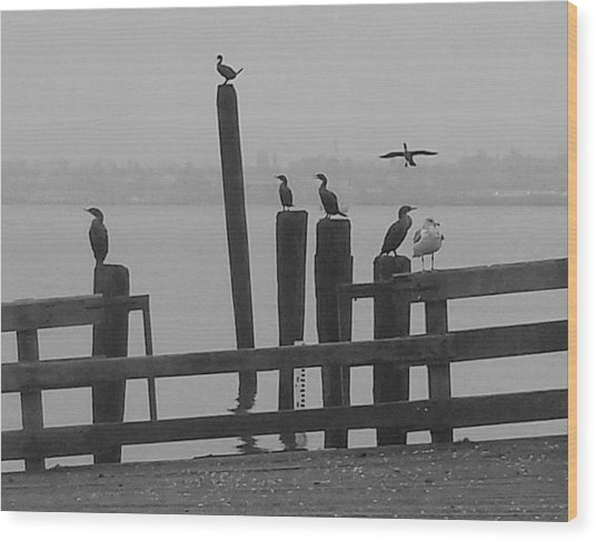Bird Party In Black And White Wood Print