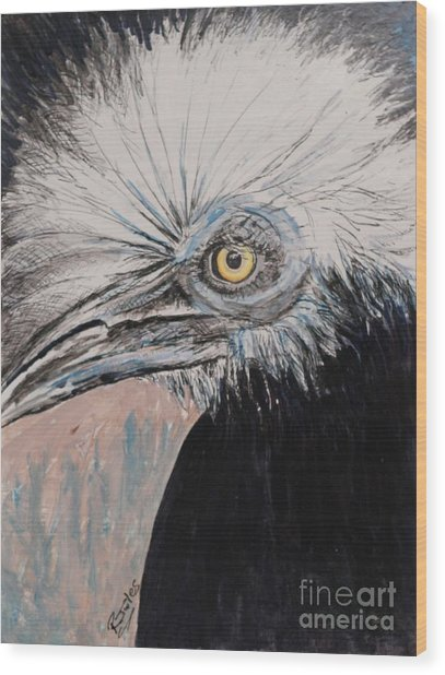 Birdeye Crown Horn Bill Wood Print