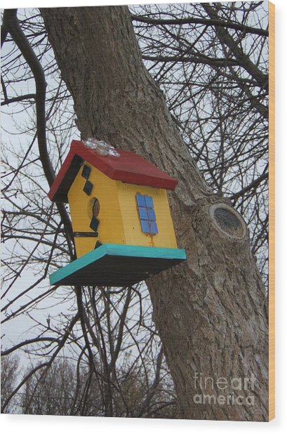 Birdhouse Of Color Wood Print by Margaret McDermott