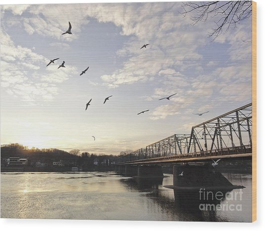 Birds And Bridges Wood Print