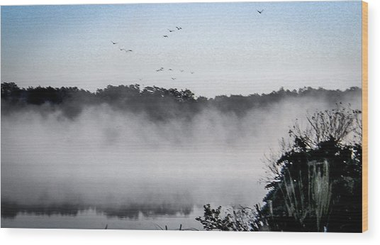 Birds Fly Above The Steamy Lake Wood Print
