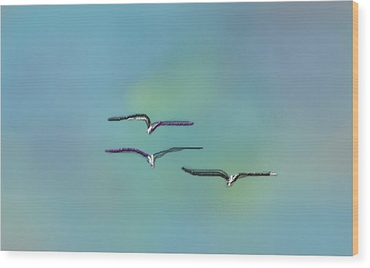 Birds In Flight Wood Print by Greg Stew