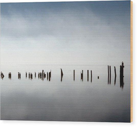 Birds In Fog Wood Print