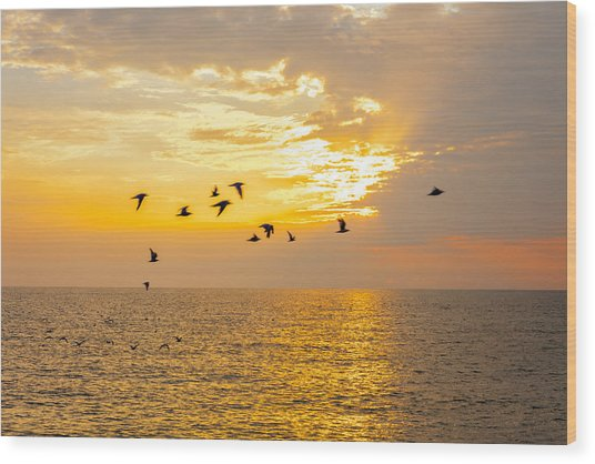 Wood Print featuring the photograph Birds In Lake Erie Sunset by David Coblitz