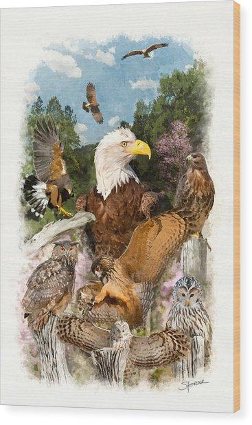 Birds Of Prey Wood Print