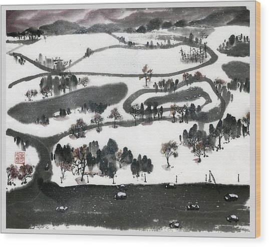 Birdview Of Forest Park From Queeny Tower Wood Print