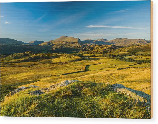 Birker Fell Lake District Wood Print by David Ross