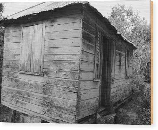 Birth Home Wood Print