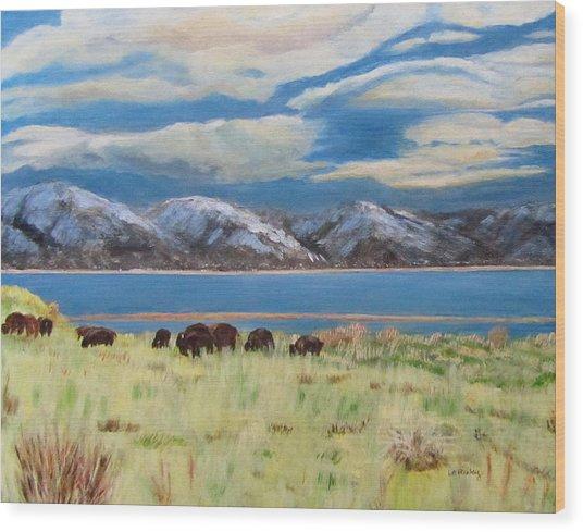 Bison On Antelope Island Wood Print