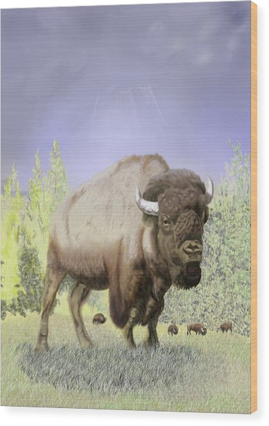 Bison On The Range Wood Print