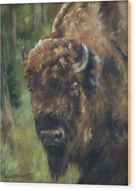 Bison Study - Zero Three Wood Print