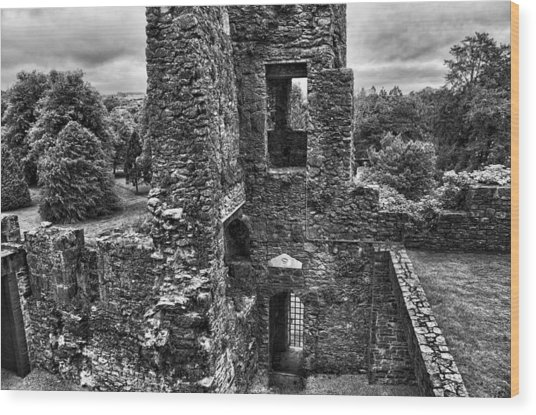 Black And White Castle Wood Print