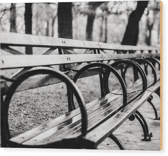 Black And White Central Park Bench In New York City Wood Print by Lisa Russo