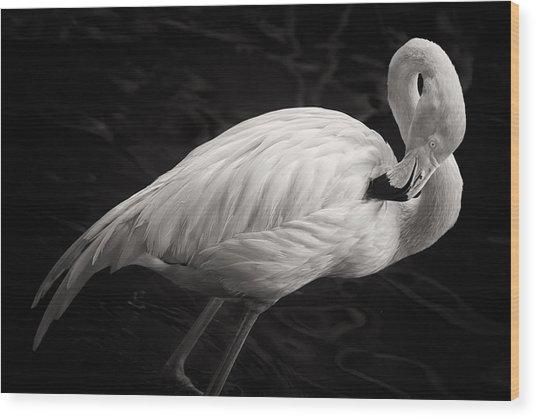 Black And White Flamingo Wood Print