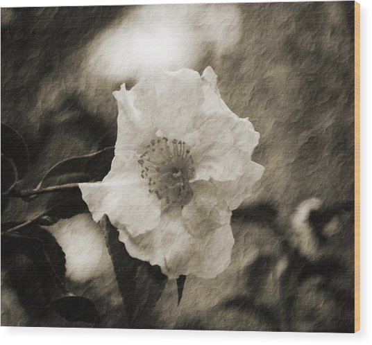 Black And White Flower With Texture Wood Print
