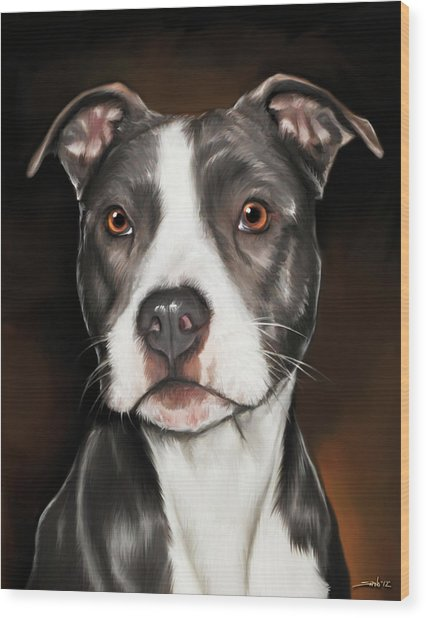 Black And White Pit Bull Terrier Wood Print