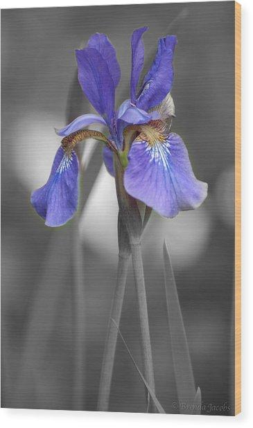 Black And White Purple Iris Wood Print