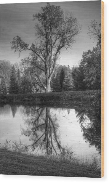 Black And White Reflections Wood Print
