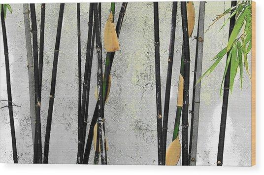 Black Bamboo #2 Sarasota Wood Print