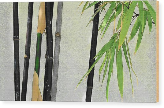 Black Bamboo Sarasota IIi Wood Print