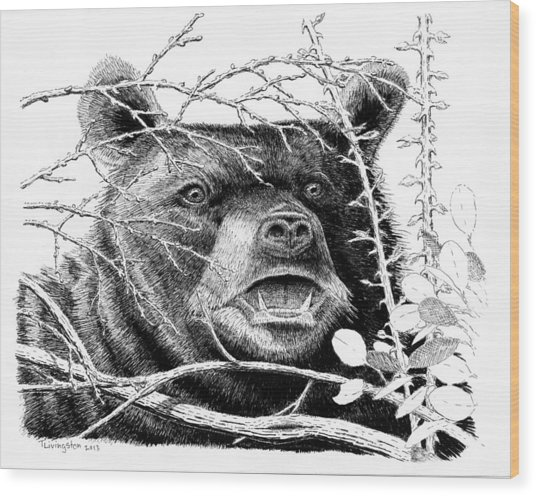Black Bear Boar Wood Print