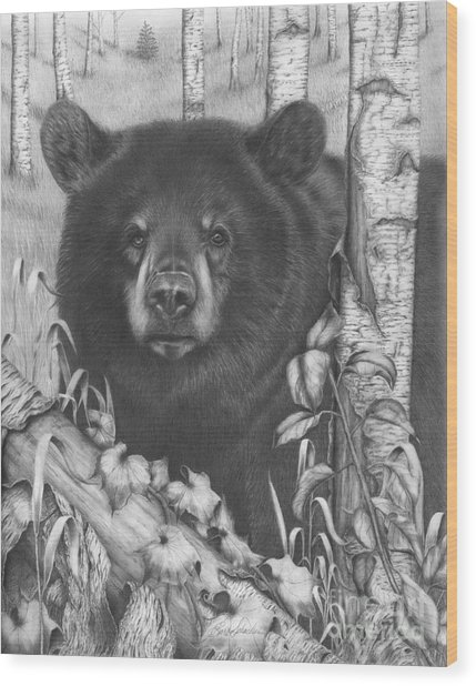 Black Bear On Newsome Creek Wood Print