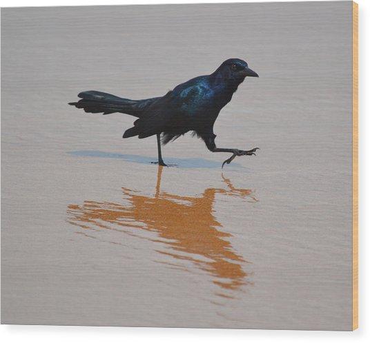 Black Bird - Strutting At The Beach Wood Print