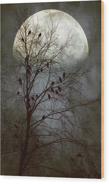 Black Birds Singing In The Dead Of Night Wood Print