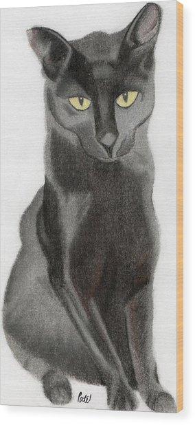 Black Cat Wood Print by Bav Patel