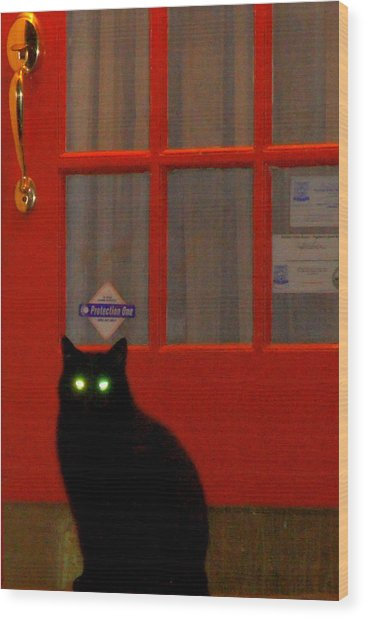 Black Cat Red Door Wood Print by DerekTXFactor Creative