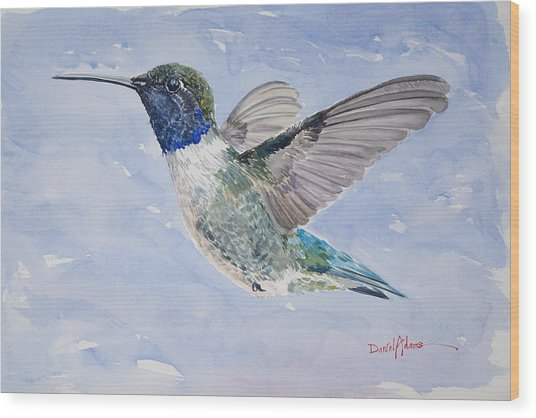 Da194 Black Chinned Hummingbird By Daniel Adams Wood Print