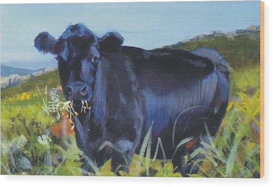Cows Dartmoor Wood Print