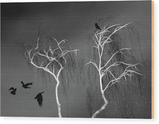 Black Crows - White Trees  Wood Print