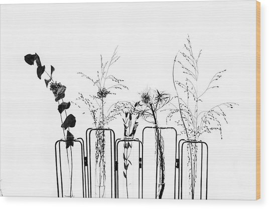 Black Flowers On White Background Wood Print by #name?