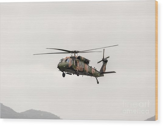 Black Hawk  Wood Print