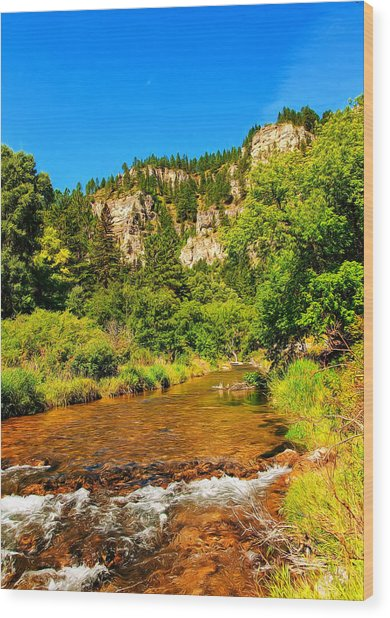Black Hills Beauty Wood Print